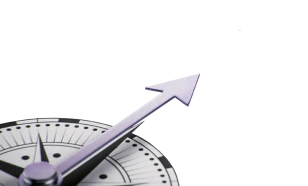 Business improvement district best practices compass